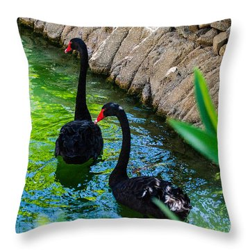 Follow The Leader Throw Pillow by Judy Wolinsky