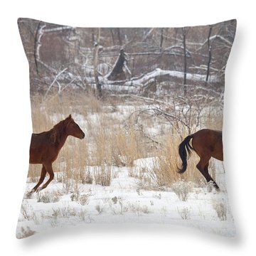Follow The Leader Throw Pillow by Mike  Dawson