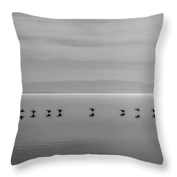 Throw Pillow featuring the photograph Follow The Leader by Robert  Aycock