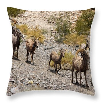 Follow The Leader Throw Pillow by Tammy Espino
