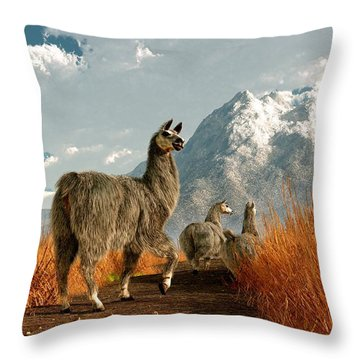 Follow The Llama Throw Pillow by Daniel Eskridge