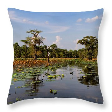 Follow The Markers Throw Pillow by Lana Trussell