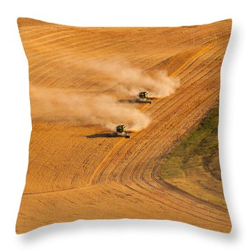 Following Throw Pillow by Mary Jo Allen