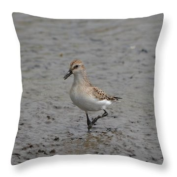 Throw Pillow featuring the photograph Food by James Petersen