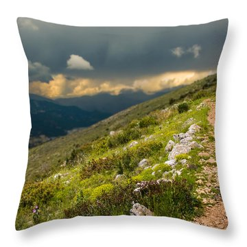 Foot Path Into The French Alps Throw Pillow
