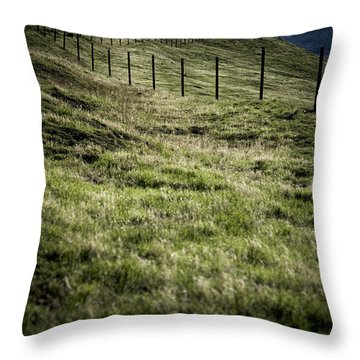 Foothills Of The Tehachipis Throw Pillow