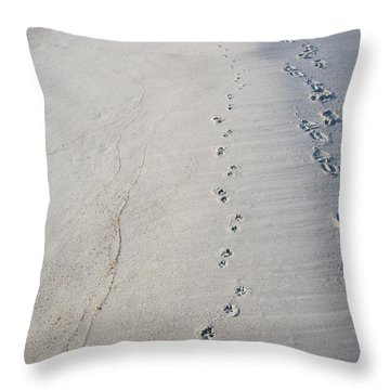 Footprints And Pawprints Throw Pillow