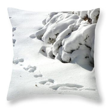 footprints in the Snow Throw Pillow by Rachel Christine Nowicki