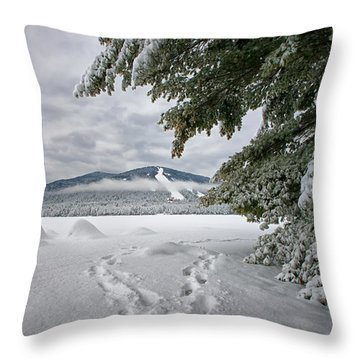 Footsteps To The Mountain Throw Pillow