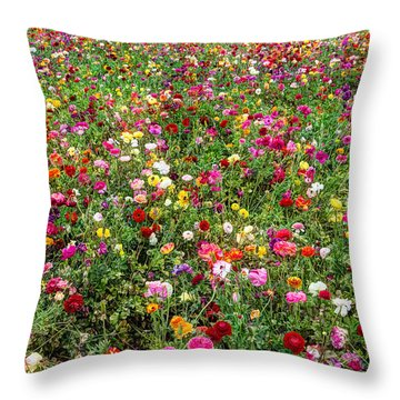 For As Far As The Eye Can See Throw Pillow by Heidi Smith
