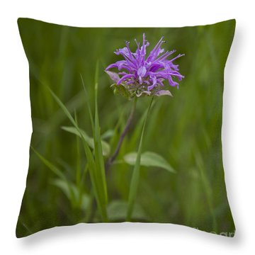 For Bees Throw Pillow
