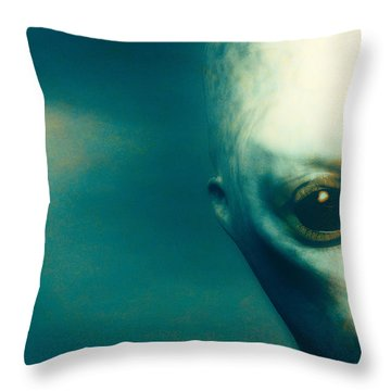 For Betty And Barney Hill Throw Pillow by Bob Orsillo
