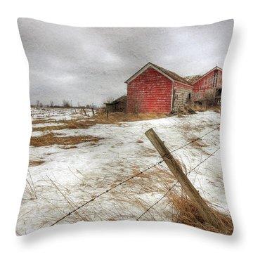 For Sale Throw Pillow by Lori Deiter
