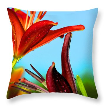 For The Love Of Lillies Throw Pillow