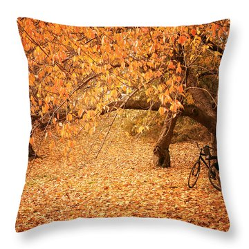 For Two - Autumn - Central Park Throw Pillow