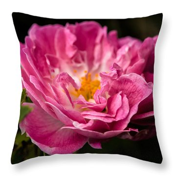 For You Throw Pillow by Edgar Laureano