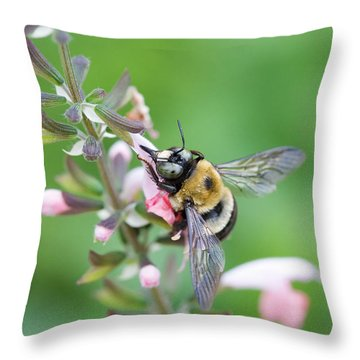 Foraging For Nectar Throw Pillow
