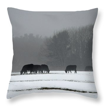Throw Pillow featuring the photograph Foraging by Glenn Gordon