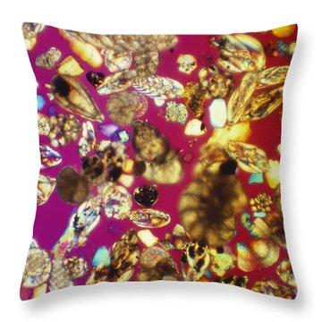 Foraminifera Lm Throw Pillow by Charles Gellis
