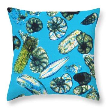Foraminifera Protists Throw Pillow by Christian Gautier