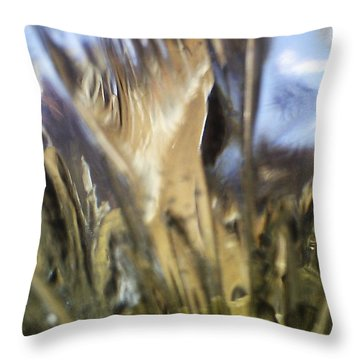Throw Pillow featuring the photograph Forbidden Forest by Martin Howard