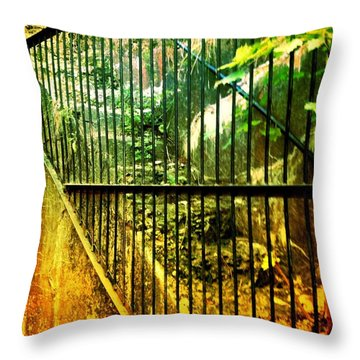 Throw Pillow featuring the photograph Forbidden Stairs by Denise Tomasura