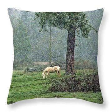 Forecast Snow Throw Pillow
