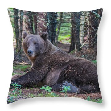 Forest Bear Throw Pillow