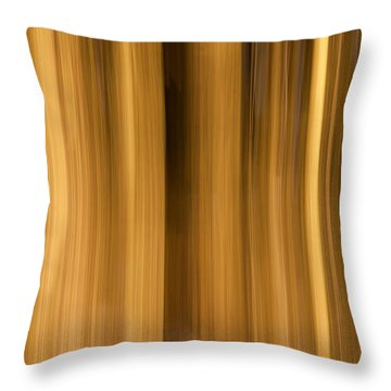 Throw Pillow featuring the photograph Abstract Forest by Davorin Mance