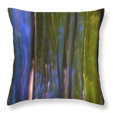 Forest Dreams Throw Pillow by Guido Montanes Castillo