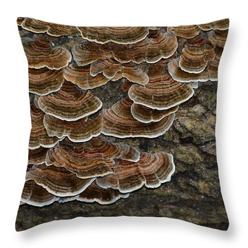 Forest Floor Number 3 Throw Pillow