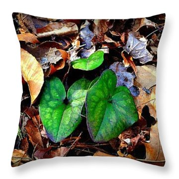 Throw Pillow featuring the photograph Forest Flora by Tara Potts