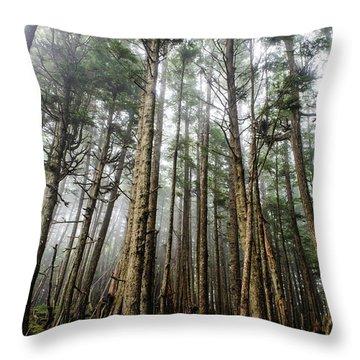 Queen Charlotte Islands Throw Pillows