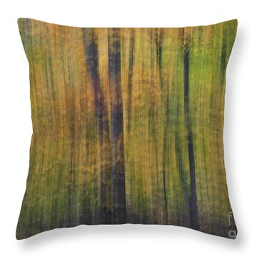Forest Glow Throw Pillow by Susan Candelario
