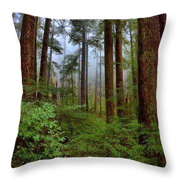 Forest Mist Throw Pillow