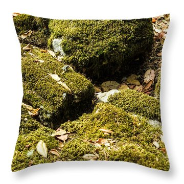 Forest Moss Throw Pillow by Suzanne Luft