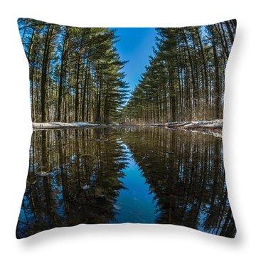 Forest Reflections Throw Pillow by Randy Scherkenbach