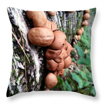 Forest Shrooms Throw Pillow by Lon Casler Bixby