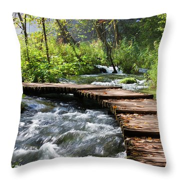 Forest Stream Scenery Throw Pillow