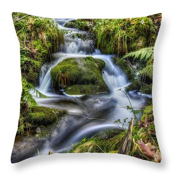 Forest Stream V2 Throw Pillow