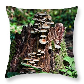 Forest Stump Throw Pillow