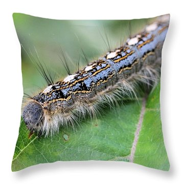 Forest Tent Caterpillar Throw Pillow