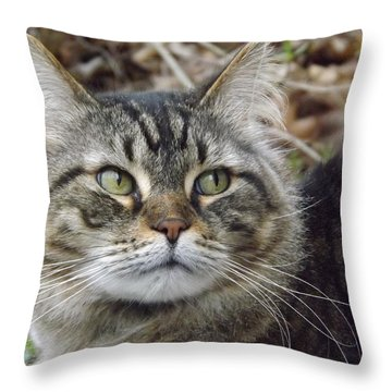 Forest The Cat Throw Pillow by Gerald Strine