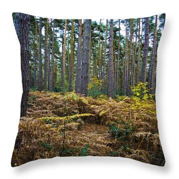 Throw Pillow featuring the photograph Forest Trees by Maj Seda