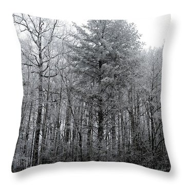 Forest With Freezing Fog Throw Pillow