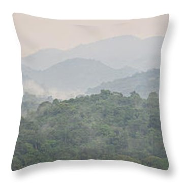 Forest With Mountain Range, Bwindi Throw Pillow