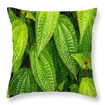 Forever Green Throw Pillow