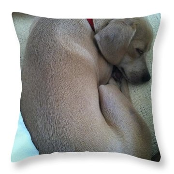 Forever Home Throw Pillow by Angela J Wright