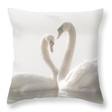 Soft Throw Pillows
