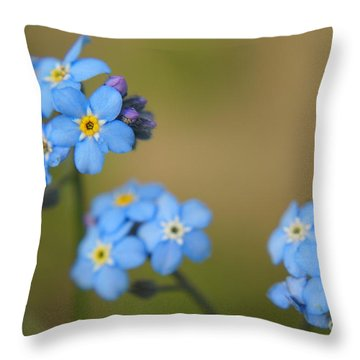 Forget Me Not 01 - S01r Throw Pillow by Variance Collections